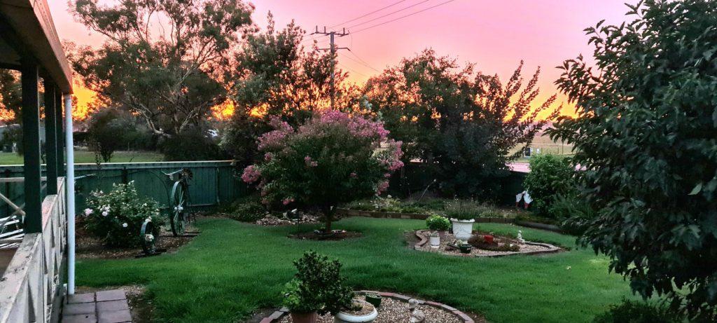 сад 92х летнего дедушки