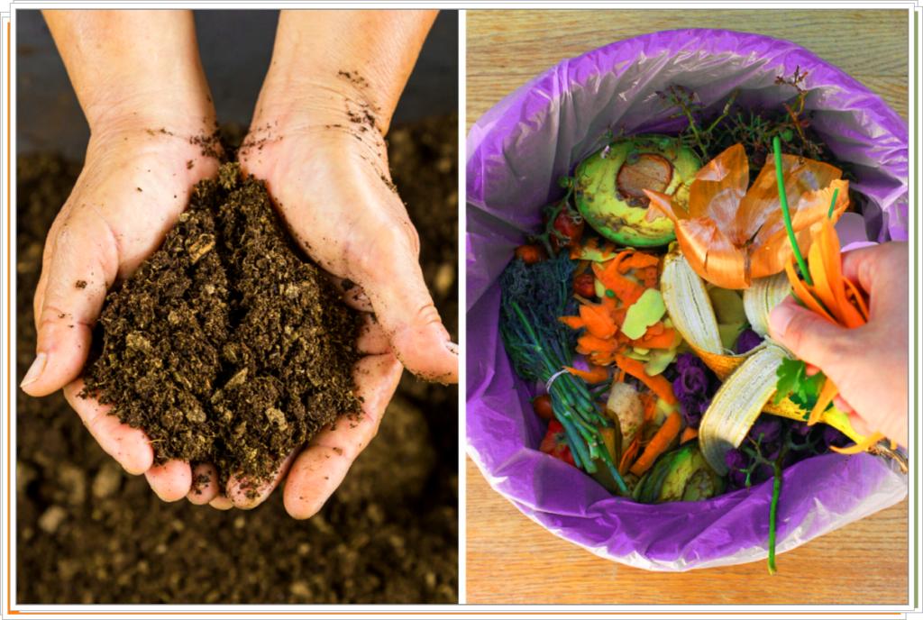 Сбор компоста из домашних отходов